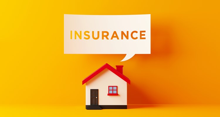 Homeowners Insurance 101: What You Need to Know